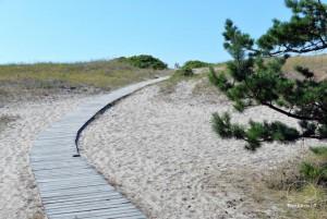 Smiltynės paplūdimiai - 6