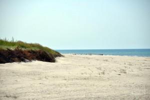 Smiltynės paplūdimiai - 7