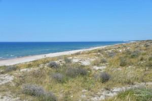 Smiltynės paplūdimiai - 15
